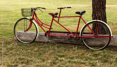 red tandem bicycle with basket in grass field photo libre de droits sur la banque d 39 images. Black Bedroom Furniture Sets. Home Design Ideas