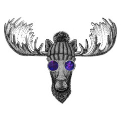 Hipster moose, elk wearing knitted hat and glasses Image for tattoo, logo, emblem, badge design