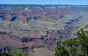 Arizona, USA - july 7 2016 : the Grand Canyon
