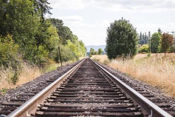 Wall Murals Railroad Train Tracks in Green Summer Landscape