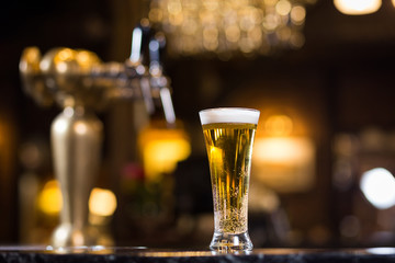 Beer, a glass of fresh cold beer on the bar.A pub.Bar.Restaurant.Classic.Evening.European restaurant.European bar.American restaurant.American bar.strong drink