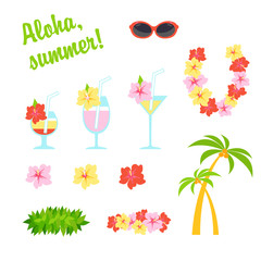 Vector flat set. Cartoon illustration travel. Holidays in Hawaii, national garland of flowers and wreath of leaves. Tropical cocktails decorated with flowers. Sunglasses and a palm tree with coconuts.