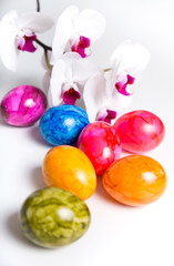 colorful easter eggs with flower orchid