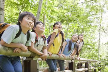 Kids on boardwalk in forest, Sapporo City, Hokkaido Prefecture, Japan