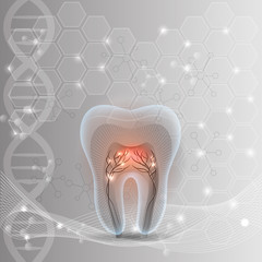 Tooth cross section abstract DNA light grey background