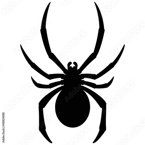 black widow spider silhouette - photo #22