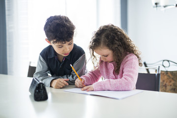 Two cute school childs working on their homework