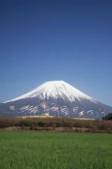 Carp Streamers and Mount Fuji