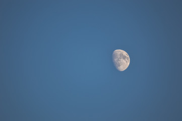 Waxing Gibus moon in a daytime sky