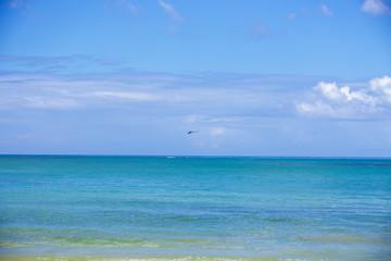 Seascape. Blue sea and sky backgroung