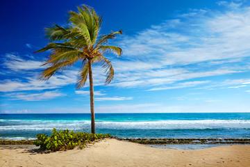 Caribbean beach and tropical sea in Haiti