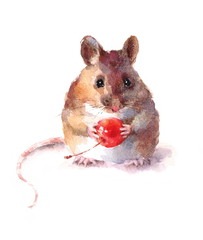 Watercolor Mouse Holding a Berry Wild Animal Rodent Hand Drawn Illustration isolated on white background
