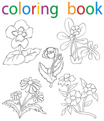 book coloring flowers set