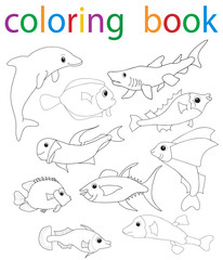 Vector, book coloring cartoon fish collection character