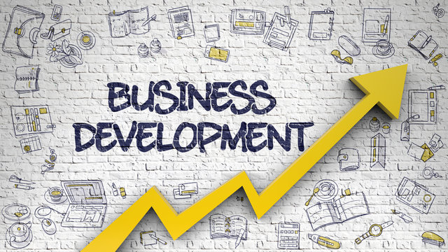 Business Development Drawn on White Brickwall. 3d.