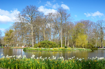 Beautiful spring landscape with flowers and a lake in the parkKeukenhof, Holland, Europe.
