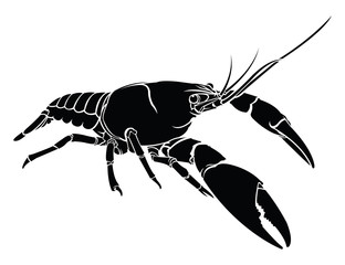 crayfish, lobster vector silhouette isolated.
