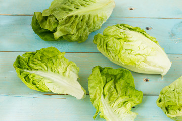 Romaine lettuce, isolated. Blue wooden table.
