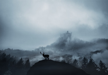 Silhouette Deer On Mountain Against Cloudy Sky