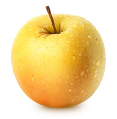 Isolated apple. Whole yellow (golden) apple fruit isolated on white, with clipping path