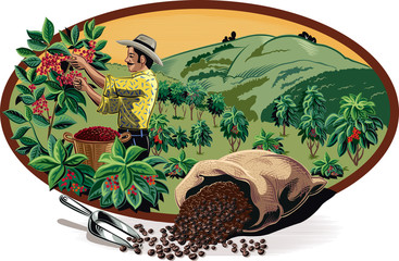 oval frame, with bags of coffee and coffee bin man on a plantation.