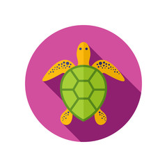Sea turtle icon. Summer. Vacation