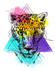 Vector hand-drawn illustration leopard.