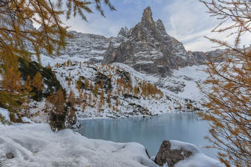 Europe, Italy, Veneto, Belluno. Sorapiss lake frozen and framed by branches of larch, Dolomites