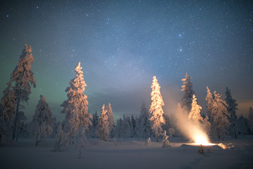 Campfire and snow covered trees at night, Finland