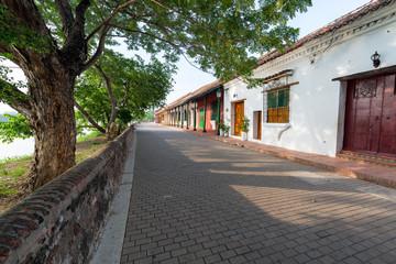 Fototapete - Tree Lined Street in Mompox