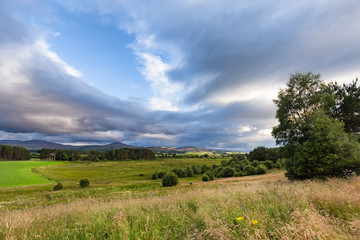 A field south of Inverness, Scotland in late afternoon in Summer.