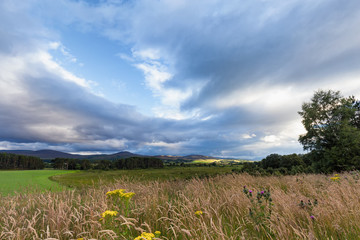 Landscape view of a field south of Inverness, Scotland in late afternoon in Summer.