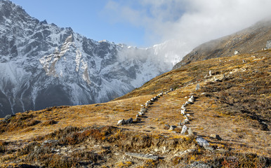 Beautiful tourist path. View from the slope of Sounder peak (near Thame village) - Nepal