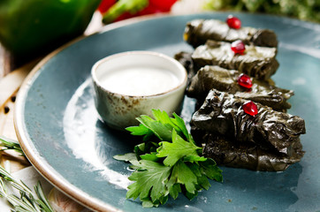 Dolma. Vine leaves stuffed with minced mutton with herbs. Served with natural yoghurt