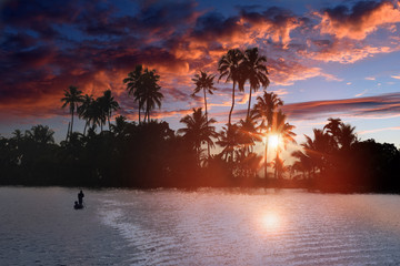 sunset at backwaters landscape with swaying coconut trees and traditional fishermen boats in Alleppey, Kerala, India