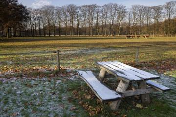 Riped picnic bench