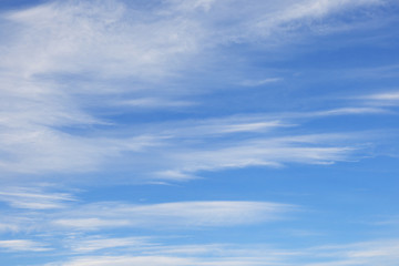 weightless clouds