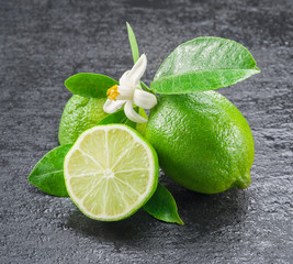 Ripe lime fruits on the gray background.