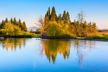 Landscape view of the lake, spring trees and reflection in the water