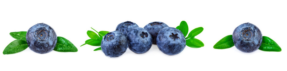 Blueeberries banner. Fresh blueberries with leaves in row on white background