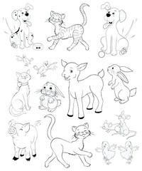 Animals on the farm coloring pages