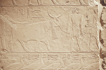 Ancient Egyptian wall relief