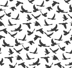 Vector, seamless pattern, silhouette of flying birds, background with black birds