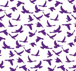 Vector, seamless pattern silhouette of flying birds,purple.