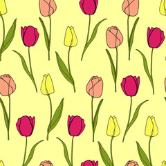 Tulip flower border background vector