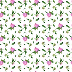 Seamless pattern of watercolor peony with buds and leaves on a white background can be used for fabric, textile, wrapping paper