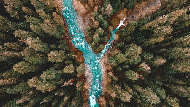 Forest with stream running through it, overhead view