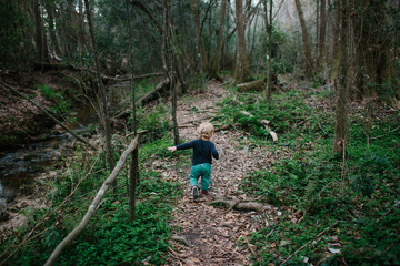 Child walking in the woods