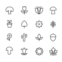 Wall Mural - Linear nature icons. Vector thin line flowers and trees, leaves and mushrooms signs