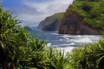 Pololu lookout coastline at North Kohala, Big Island, Hawaii